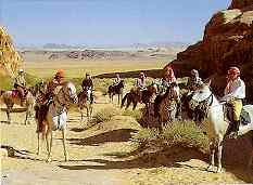 Horse riding vacations in Egypt