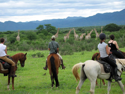 Horse riding Safaris in Namibia