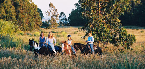 Family equestrian Vacations
