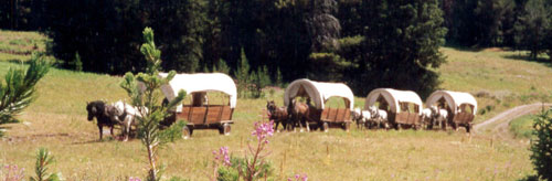 Covered Wagon Trains on horseback
