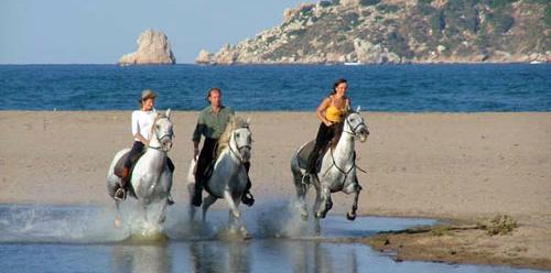 Beach Rides Horseback Riding Vacations