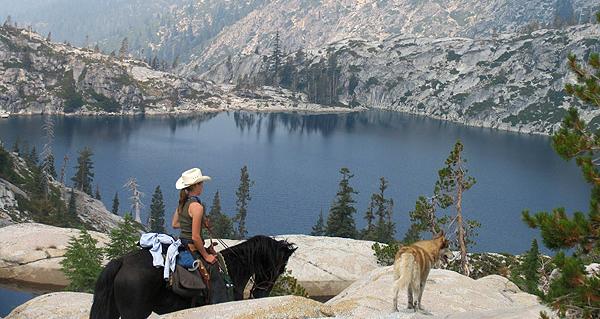 Trinity Alps Coffee Guest Creek Ranch in California, USA