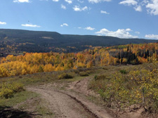 USA-Colorado-Routt National Forest Guest Ranch