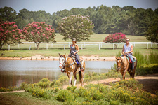 USA-Georgia-Heartland of Georgia SC Ranch