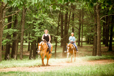 USA-Georgia-Heartland of Georgia SC Ranch Getaway