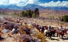 USA-California-Owens Valley Horse Drive