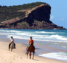 Australia-NSW-Comboyne Plateau and Beach Ride