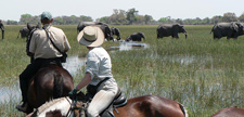 Botswana-Okavango Delta-Okavango Big Five Safari - 6 days