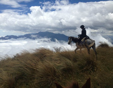 Ecuador-Highlands Riding Tours-Wild Andes Expedition