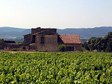 France-Provence-A Taste of Provence