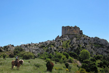 France-Provence-Provence to Camargue Mediterranean Ride