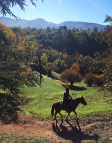France-Provence-French Colorado Provence Ride
