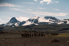 Iceland-Northern Tours-Pearls of the North