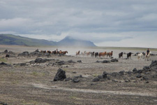 Iceland-Highland Tours-Between Glaciers into the Desert
