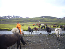 Iceland-Highland Tours-Classic Wilderness Tour