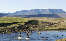 Iceland-Highland Tours-Kjolur Ride - Between the Glaciers
