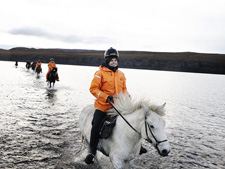 Iceland-Iceland Shorts-Horse Round Up in Iceland