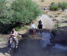 Israel-North-On Horseback in the Land of Galilee