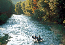 Italy-Tuscany-Western Riding in Tuscany - Center Based Star Ride Option
