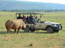 South Africa-Waterberg-Triple B Ranch