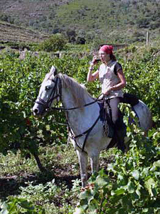 Spain-Catalonia-Wild Coast Wine Trail