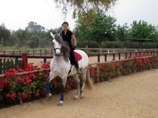 Spain-Southern Spain-Classical Dressage Clinic - in Southern Spain