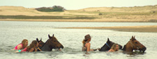 Uruguay-Uruguay-La Barra to Garzon Ride