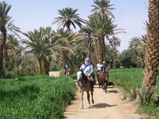 Morocco-Morocco-Oasis of Tafilalelt Expedition