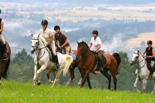 Germany-Black Forest-Castle Sindlingen Equestrian