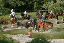 Germany-Black Forest-Sindlingen Two Week Clinic