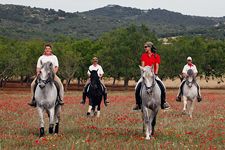 Spain-Mallorca/Menorca-Improve your Riding on Mallorca