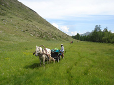Siberia-Siberia-Altai Mountains Ride in Siberia