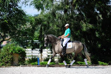 Portugal-Lisbon Area-Dressage Clinic in Ribatejo