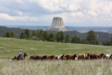 USA-Wyoming-Devils Tower View Working Ranch