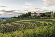 Italy-Northern Italy-Friuli Cycling Tour