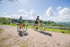 Italy-Northern Italy-Mountainbike from Trieste to Porec