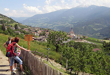 Italy-Northern Italy-Chestnut and Wine Route in Tyrol