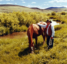 USA-Montana-Big Belt Cattle Drive