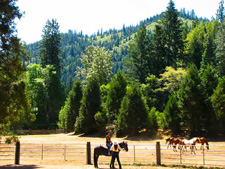 USA-California-Trinity Alps - Coffee Creek Ranch