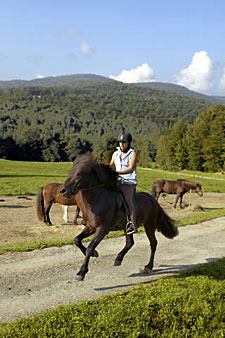 Vermont Country Inn Ride - Sugarbush