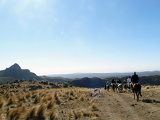 Riding on Peruvian Pasos in Argentina