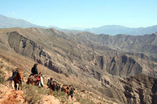 Inca Trails near Salta