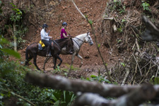 Costa Rica-Pacific Coast-Conquistadores Wilderness Eco-Safari