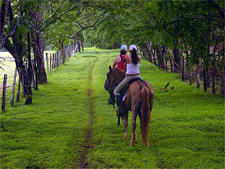Costa Rica-Guanacaste-Great  Haciendas of Guanacaste - Three Ticos
