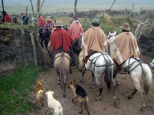 Ecuador-Highlands Riding Tours-Cotopaxi Cattle & Horse Round Up in Ecuador