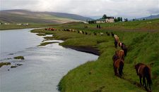Iceland-Northern Tours-Northern Elves Trail