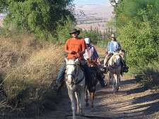 On Horseback in the Land of Galilee