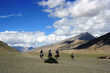 India-Ladakh-Himalaya Horse Safari