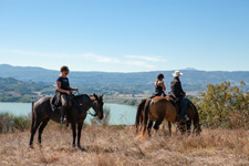 Italy-Umbria-Parelli Natural Horsemanship & Trails in Umbria