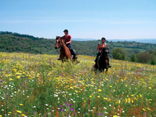 Italy-Tuscany-Relaxed Tuscan Ride in Maremma